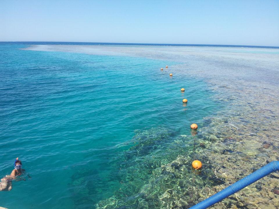 Stella Di Mare Beach Resort Spa Holidaycheck
