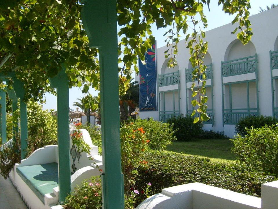 Blick zu den Hotels und der sauberen Gartenanlage Hotel El Mouradi Cap Mahdia