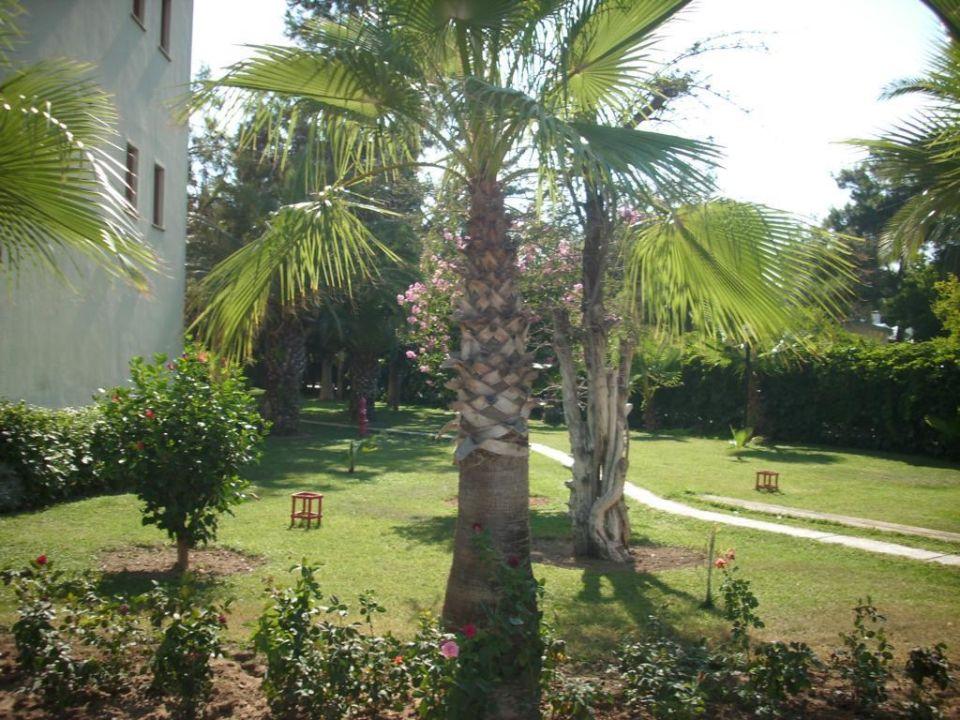 Gut gepflegter Garten LABRANDA Excelsior Side