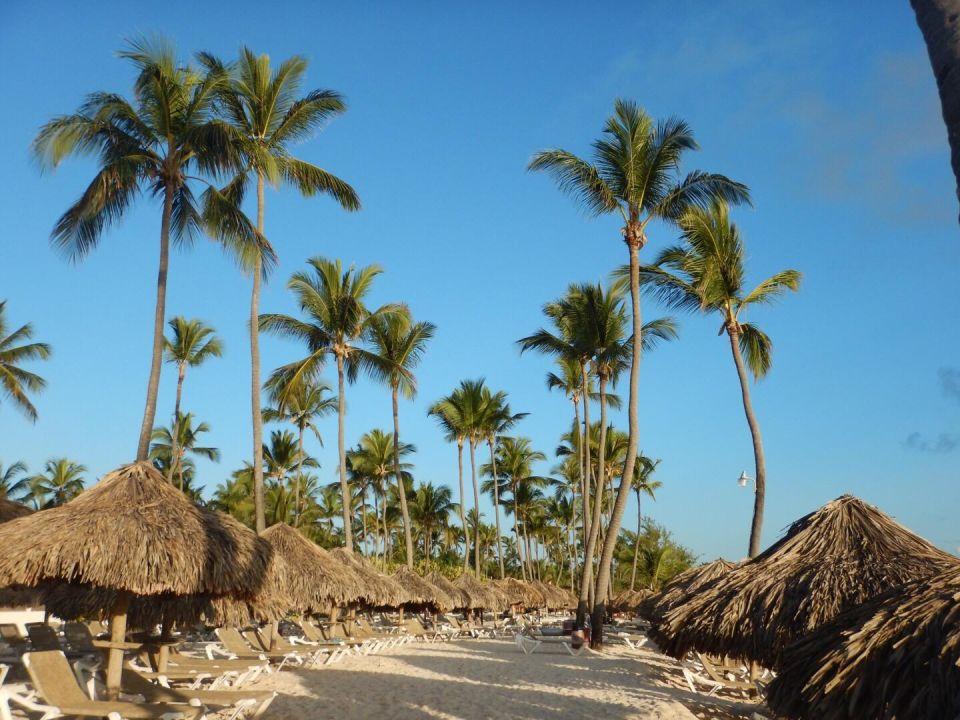 Bavaro Princess All Suites Resort Spa & Casino Dominikanische Republik Ostkuste
