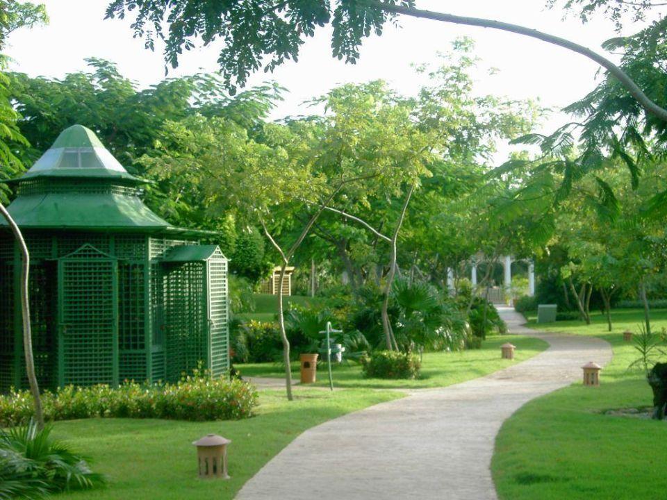 Garten IBEROSTAR Hotel Hacienda Dominicus