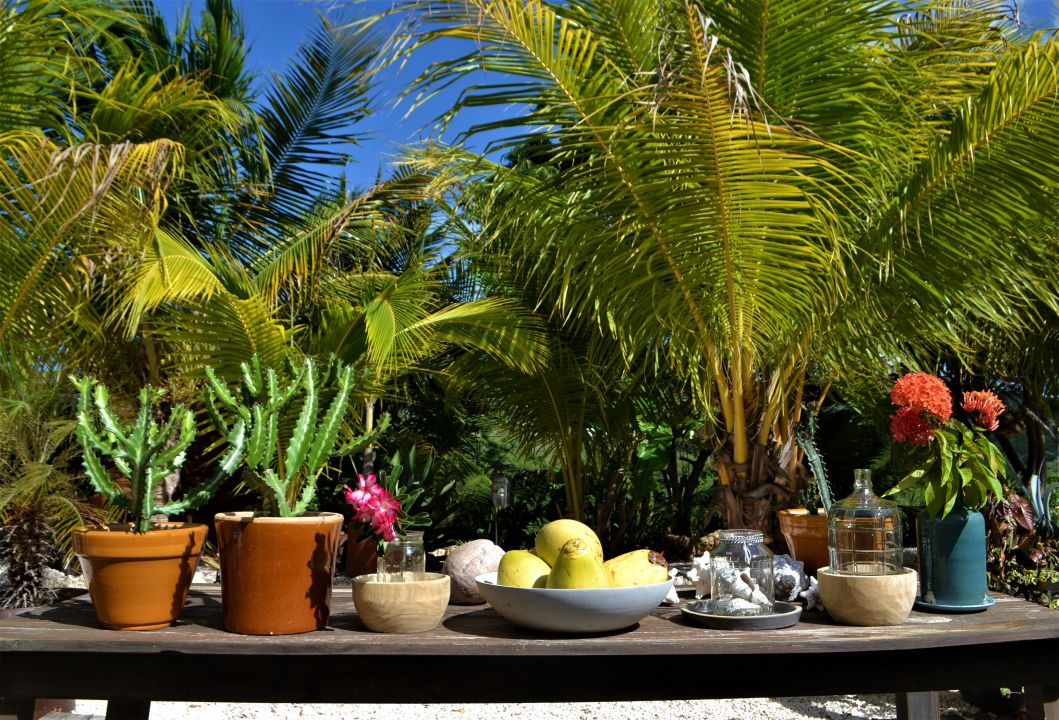 Gartenanlage Jan Kok Lodges