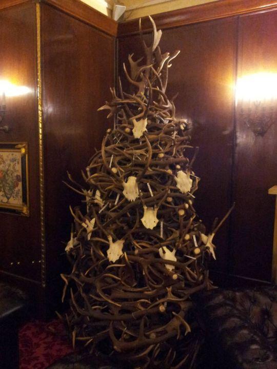 Weihnachtsbaum aus abgeworfenen Geweihen\