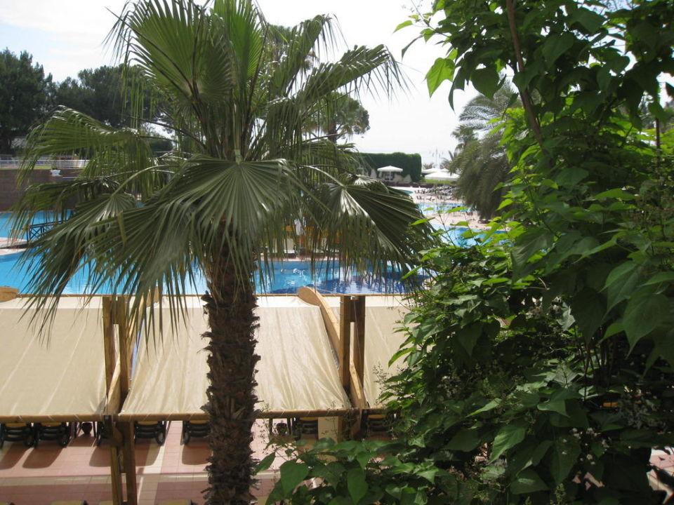 Hotel Rixos Tekirova Rixos Premium Tekirova
