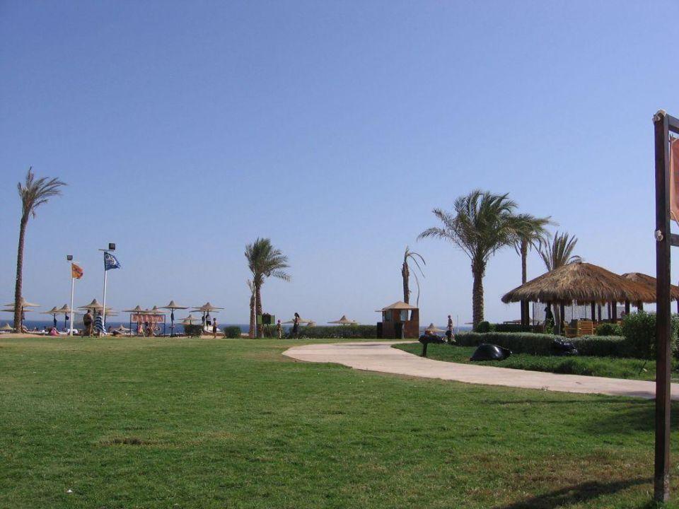 Przy plaży i basenie Shores Amphoras Resort