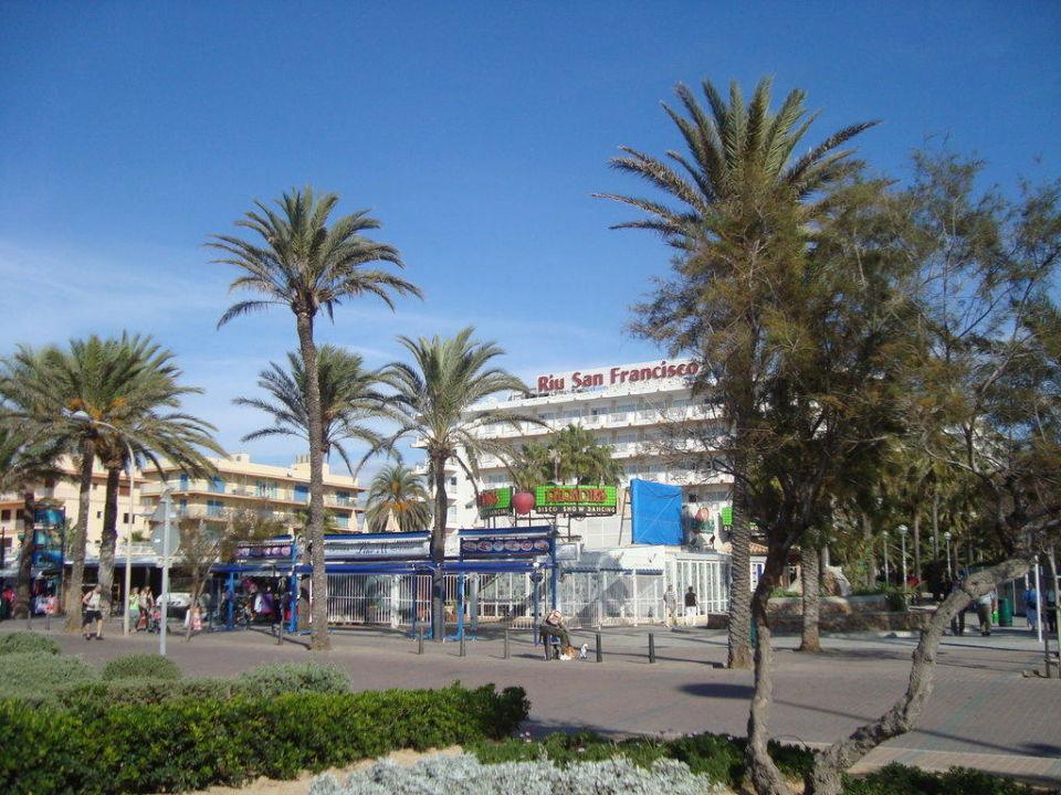 Blick vom Strand auf das Hotel Hotel Riu San Francisco - Adults only