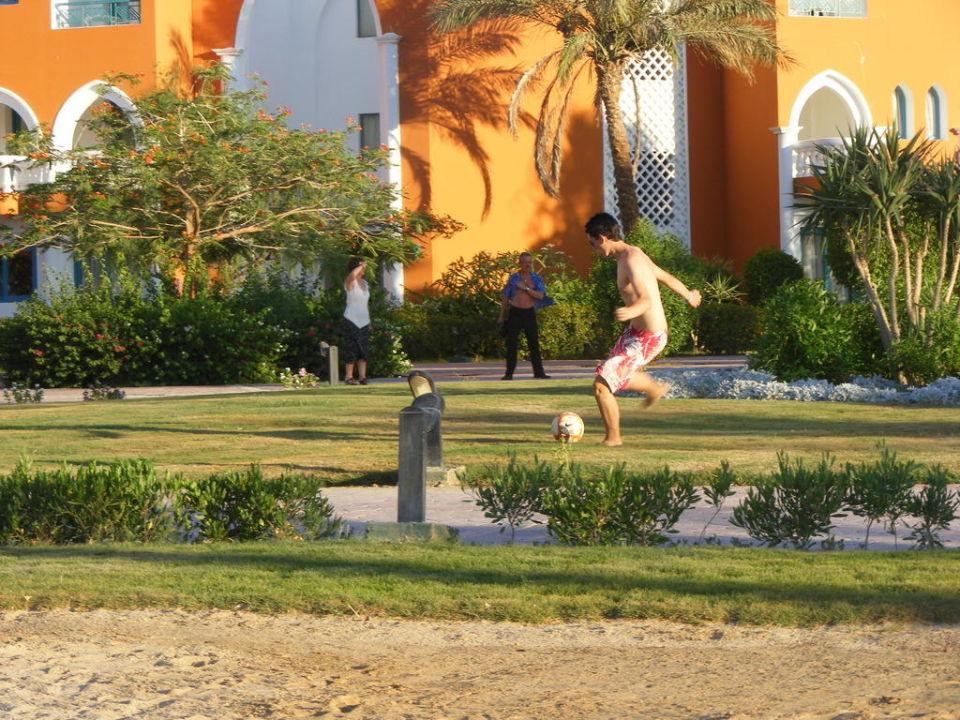 Zielono, zielono! SUNRISE Garden Beach Resort