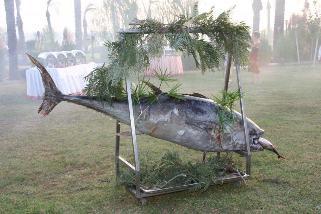 Fischfang Trendy Aspendos Beach Hotel