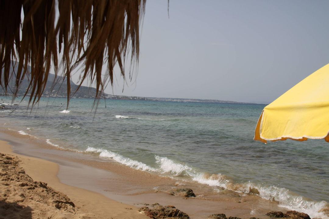 Ausblick Vom Strand Aeolos Beach Malia Holidaycheck Kreta