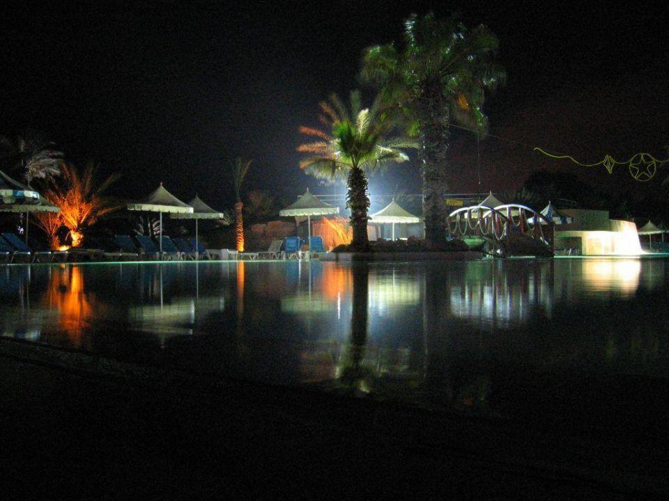Pool bei Nacht Hotel Laico Djerba