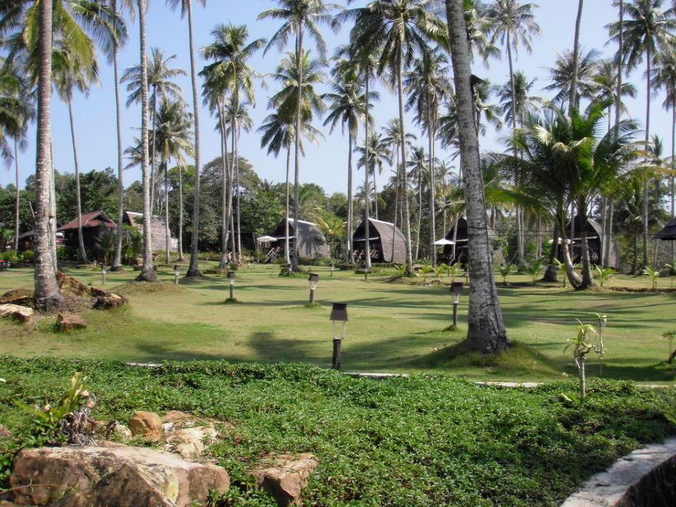 Palmengarten Koh Kood Beach Resort