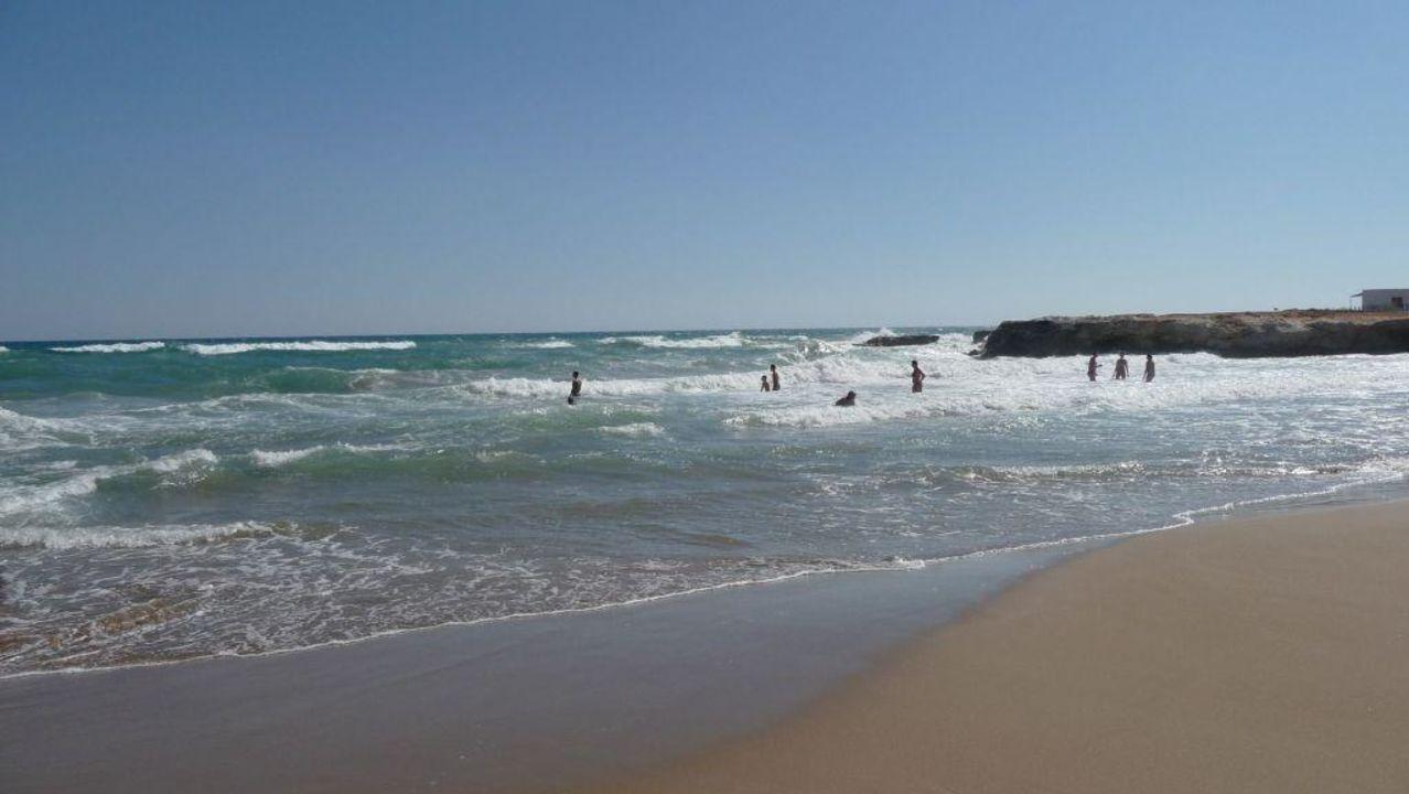 Plage Hotel Europa Beach Analipsi Holidaycheck Kreta