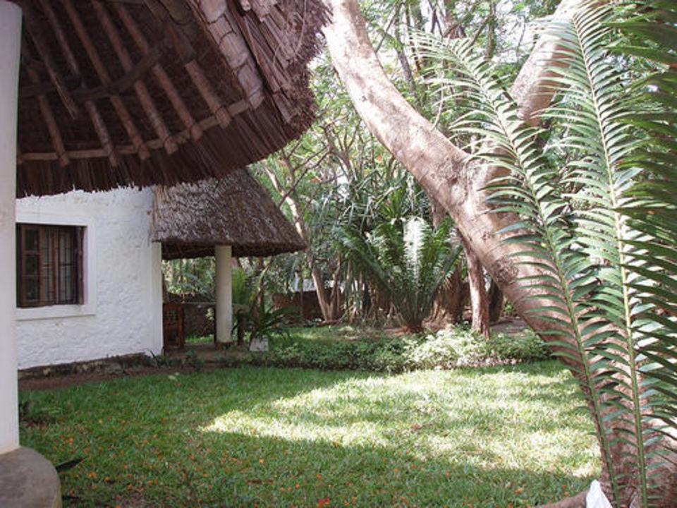 Wohneinheit mit Liegewiese Tropical Garden Apartments  (geschlossen)
