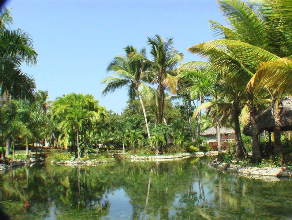 Hotelgarten Catalonia Bavaro Beach, Golf & Casino Resort
