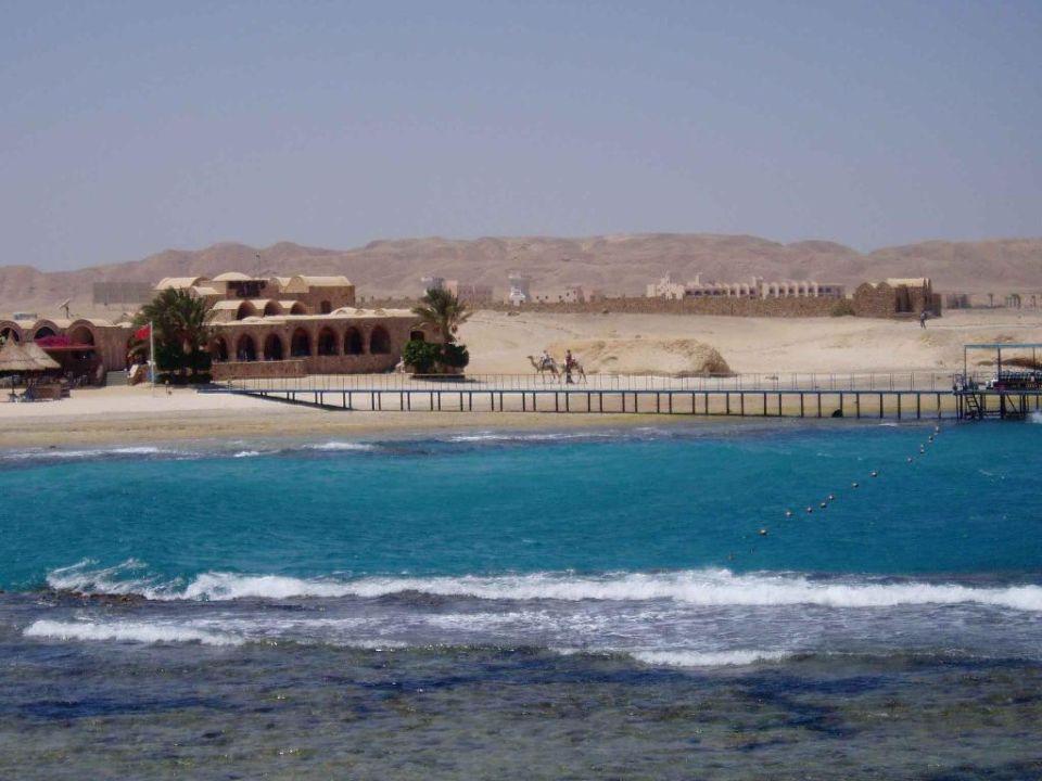 Subex Tauchschule Mövenpick Resort El Quseir