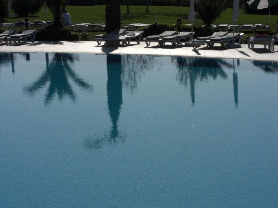 Pool und Liegen Trendy Aspendos Beach Hotel