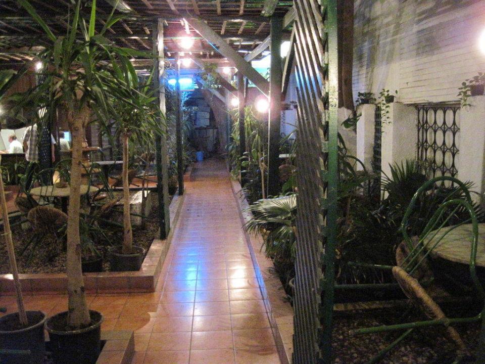 Oase der Ruhe und Entspannung: Hotelgarten Hotel Victoria