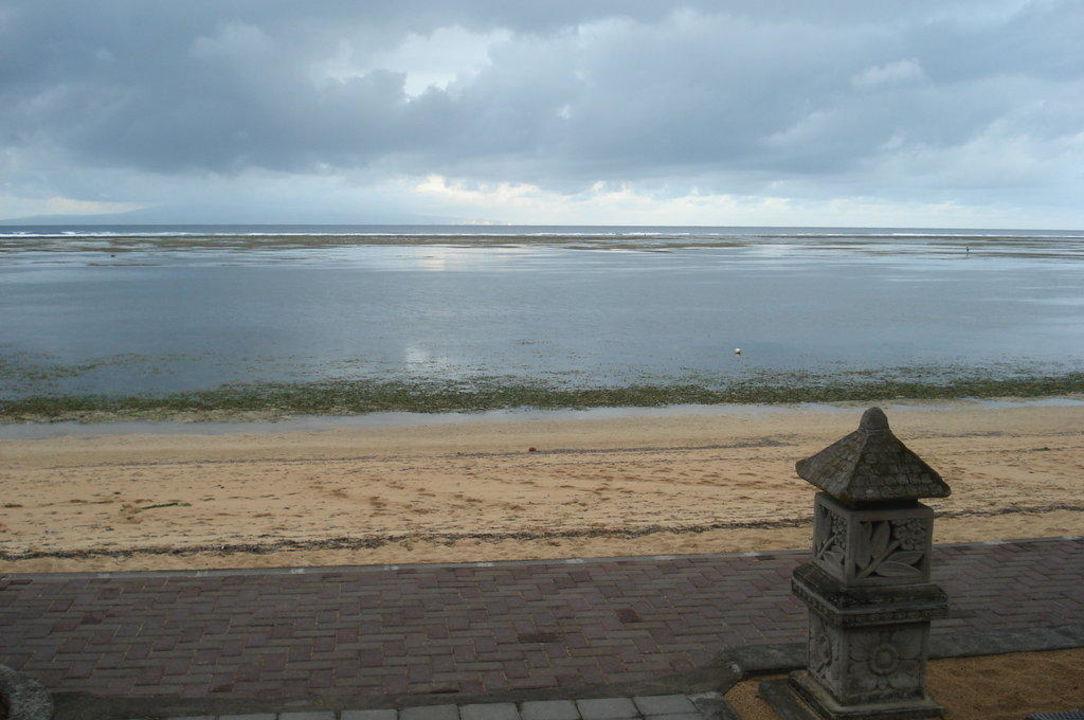 """Das Meer oder die """"Seegraswiese"""" Hotel Peneeda View"""