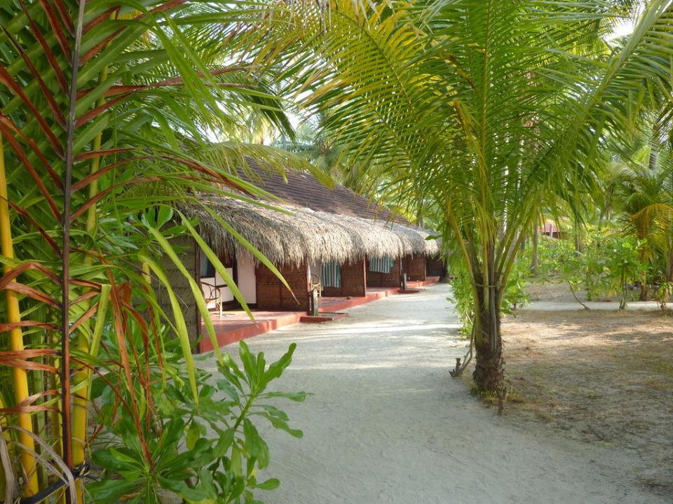 Bungalows Hotel Bangaram Island Resort