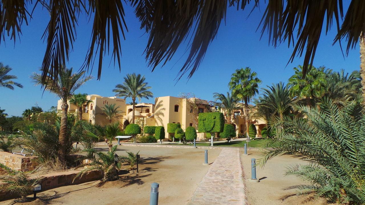Join. Iberotel coraya beach resort adults only commit error