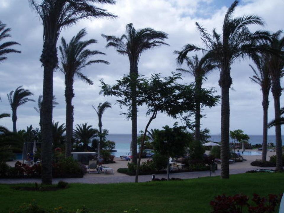 Blick vom Zimmer im EG R2 Pajara Beach