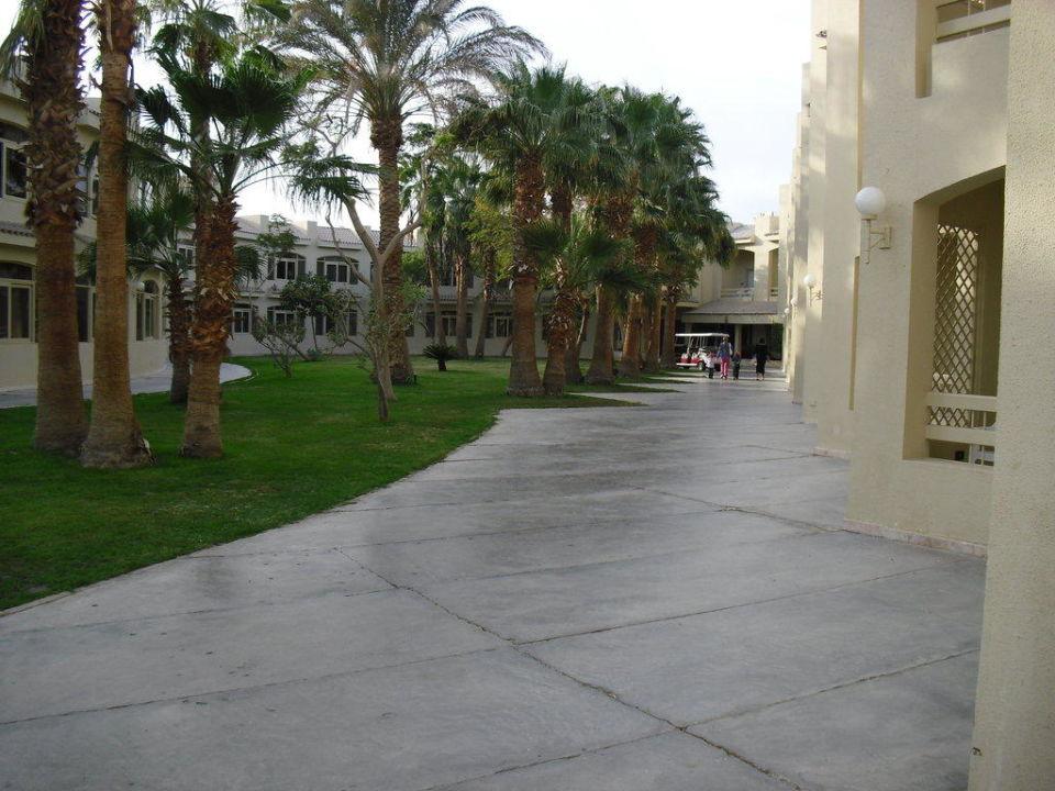 Blick Um Die Ecke Von Der Terrasse Sindbad Club Beach Resort