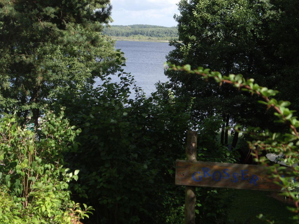Blick zum See Familotel Borchard's Rookhus am See