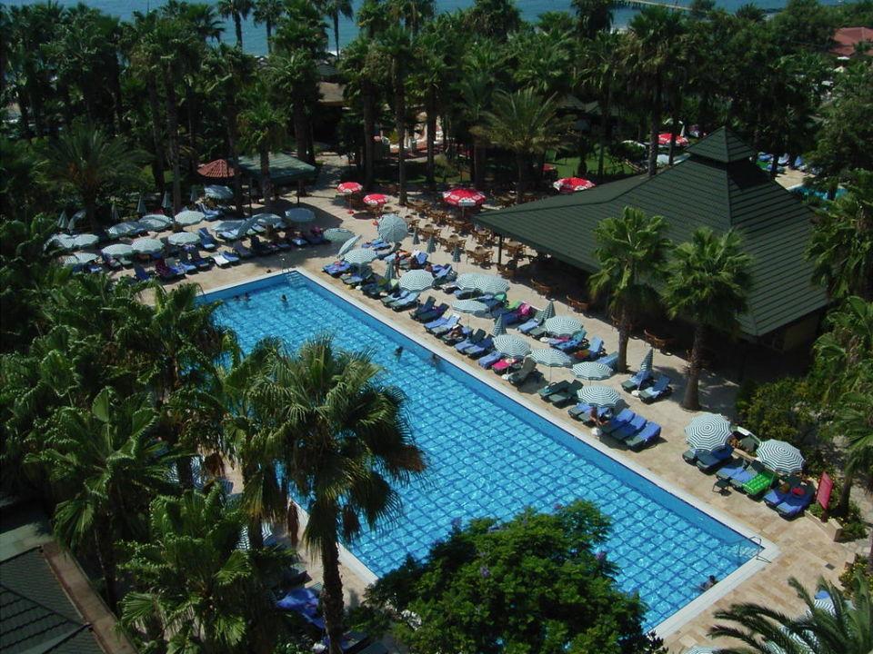 Pool mit Liegen von oben Hotel Meryan