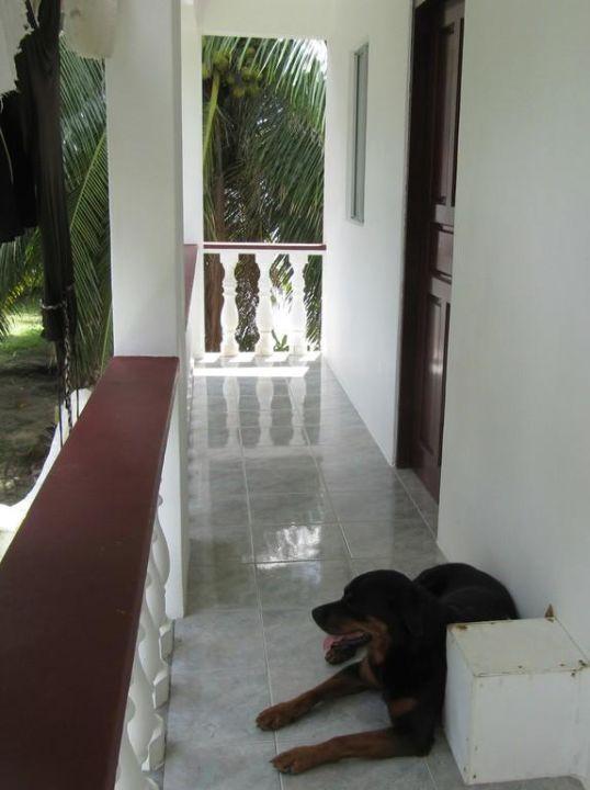 Zugang zum Apartment Nr. 2 Jamelah Apartments & Guest House