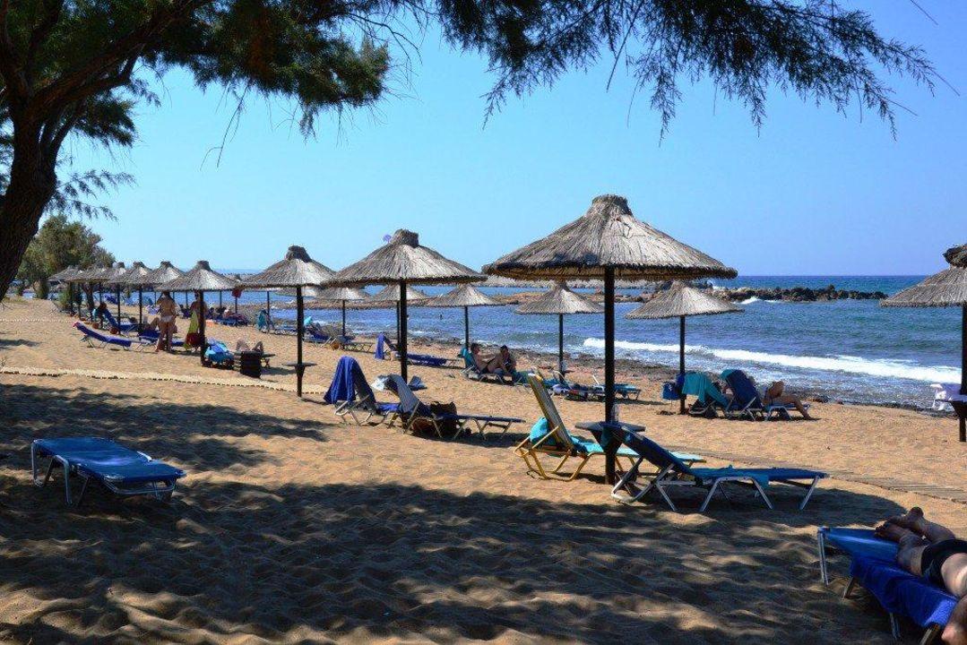 Strand Mittag Hotel Cretan Malia Park Malia Holidaycheck Kreta