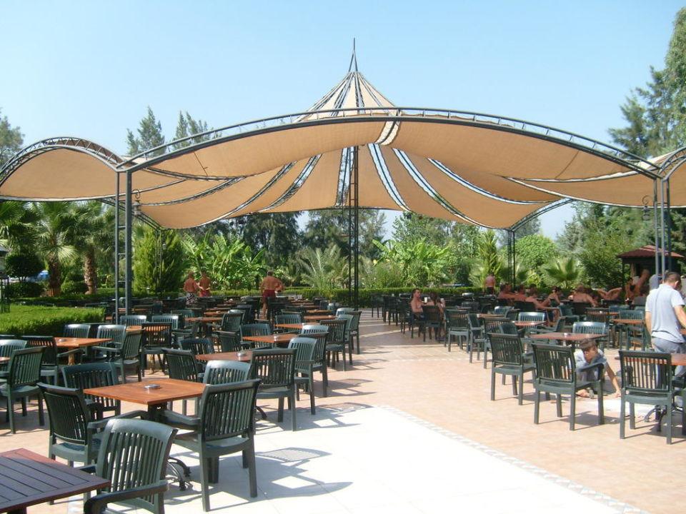 Poolbar am Tag Vera Stone Palace Resort