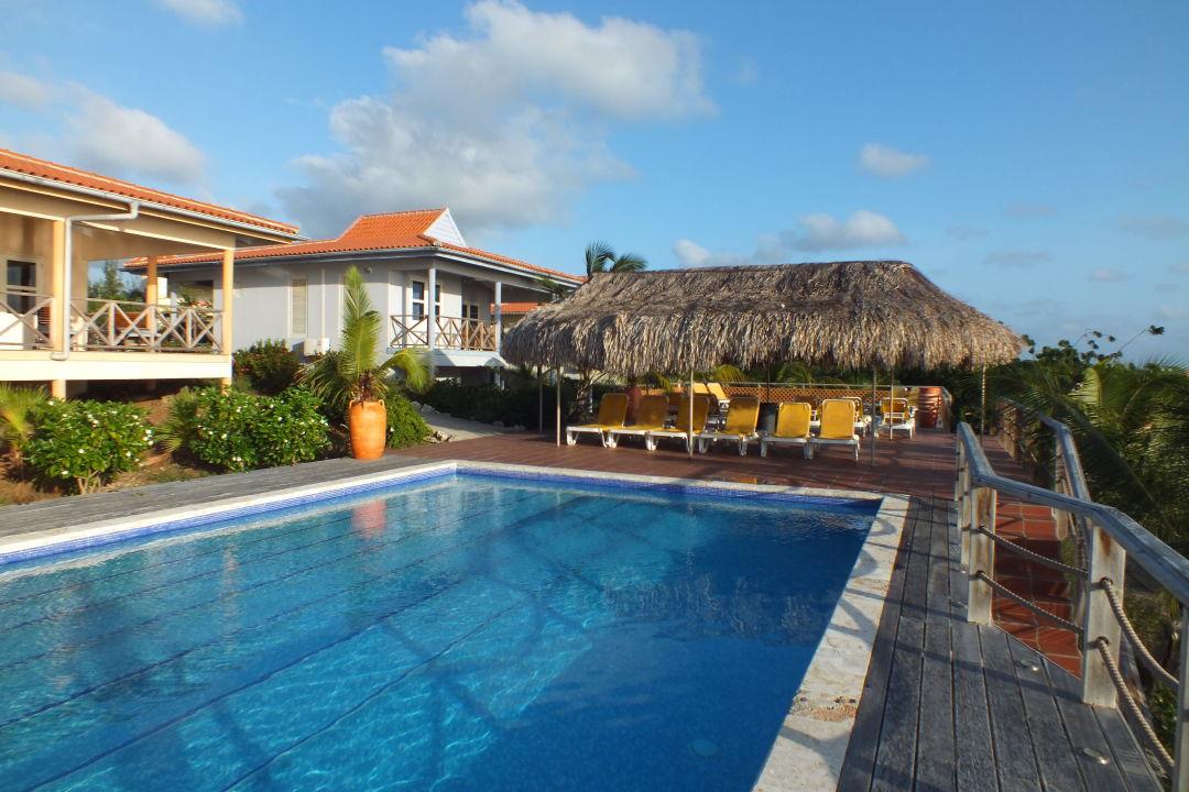 Pool mit schönem Blick aufs Meer Hotel Caribbean Club Bonaire