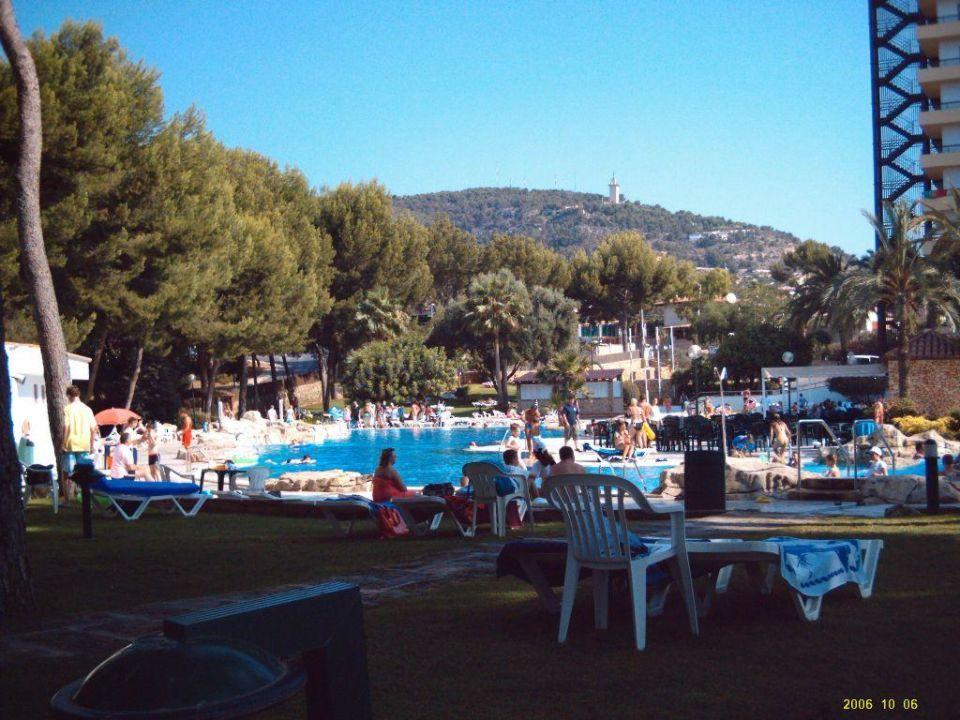 Pool BQ Belvedere Hotel