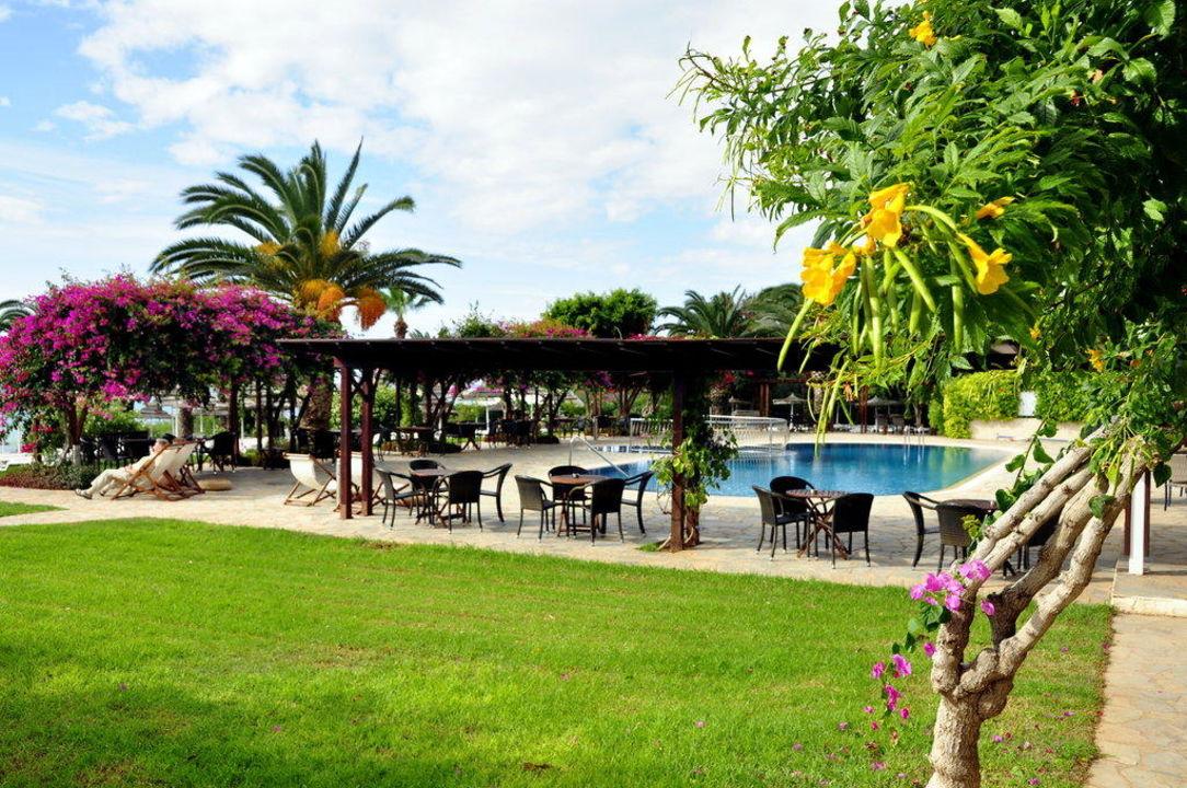 Palmen und Blüten Hotel Alion Beach