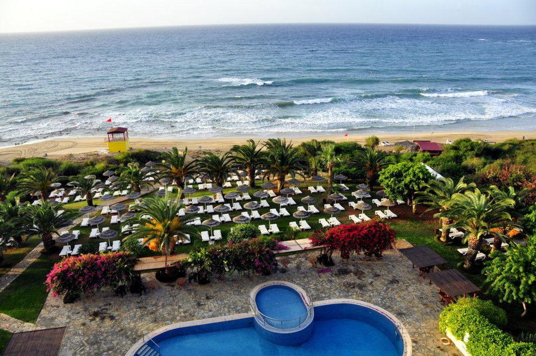 Blick in den Garten Hotel Alion Beach