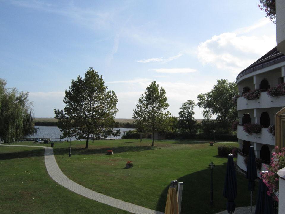 Blick aus dem fenster land  Blick aus dem Fenster zum Neusiedlersee