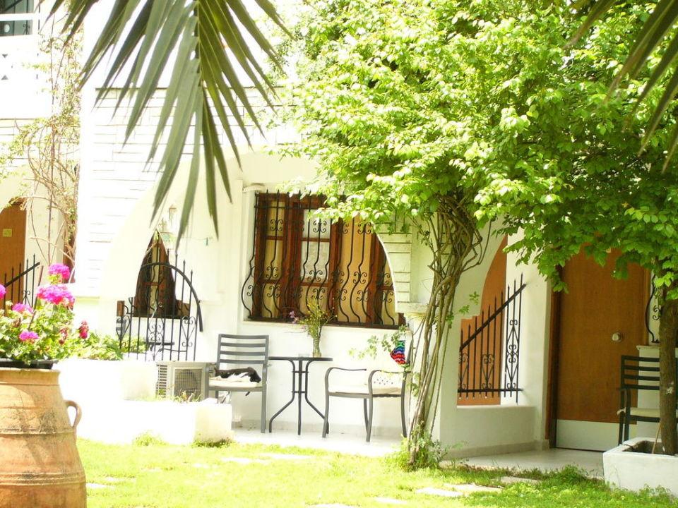 bild kleine terrasse zu hotel porfi beach in nikiti. Black Bedroom Furniture Sets. Home Design Ideas