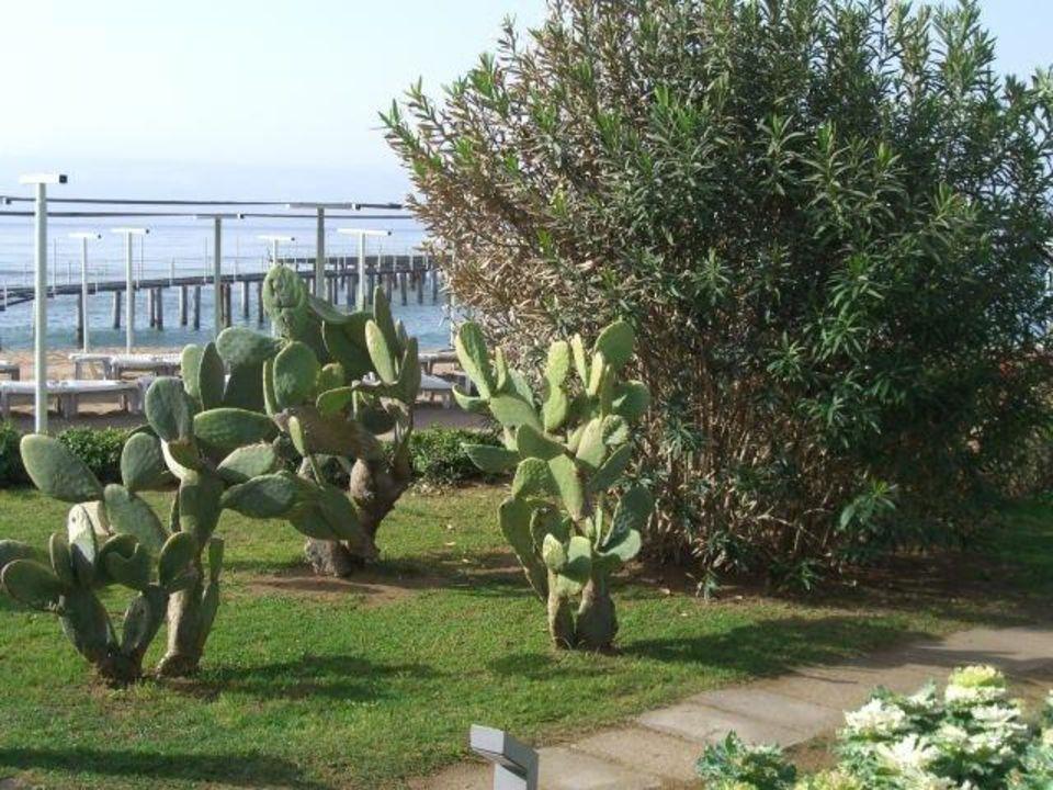 Weg zur Beachbar Arcanus Side Resort