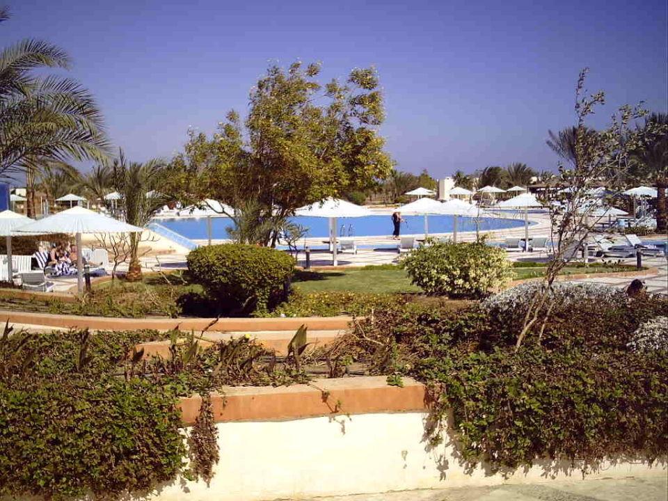 Pool Pharaoh Azur Resort