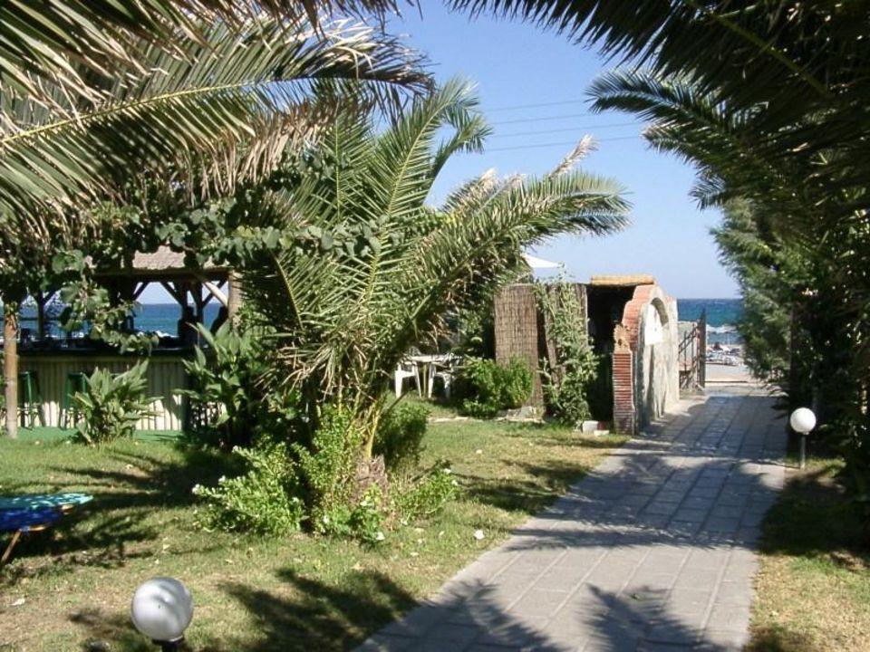 Von der Liegewiese zum Strand - Faliraki Beach Hotel Mitsis Faliraki Beach Hotel & Spa