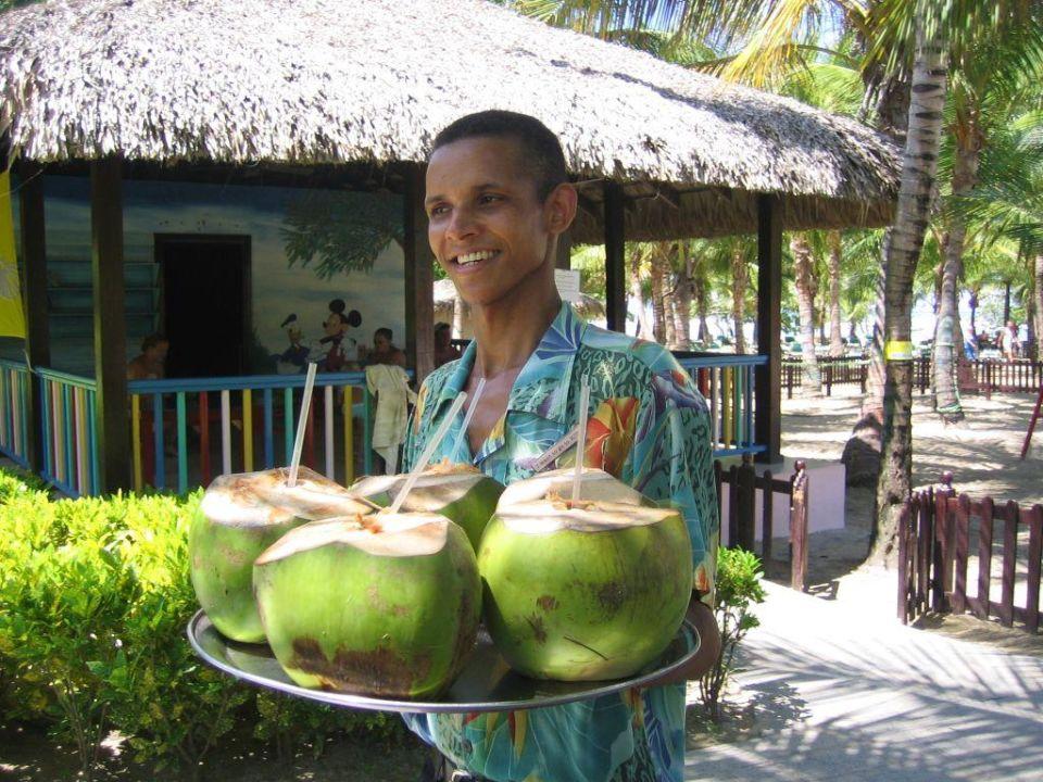 Der Kokosnuß-Drink Merengue Village