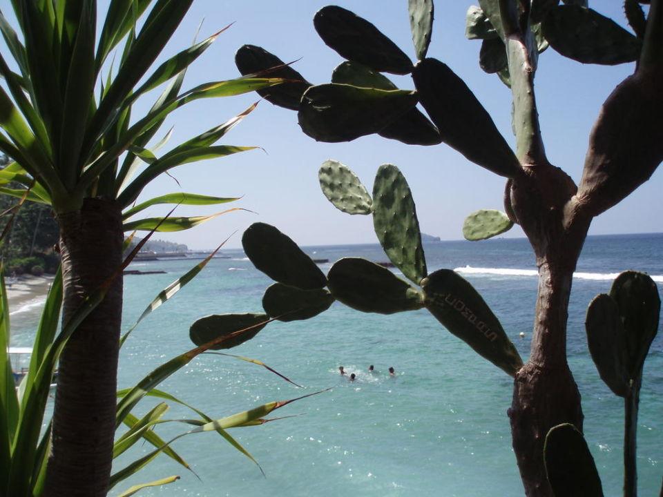 Ausblick vom Restaurant Ramayana Candidasa