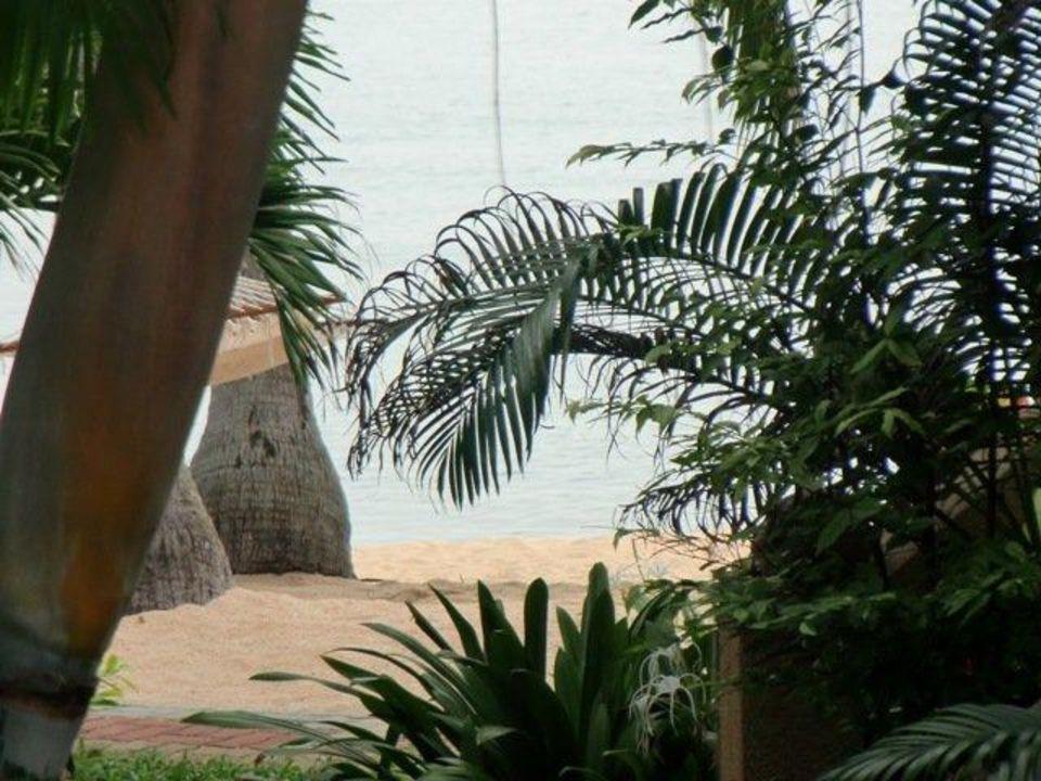 Blick von der Terrasse aus Hotel Maenam Resort