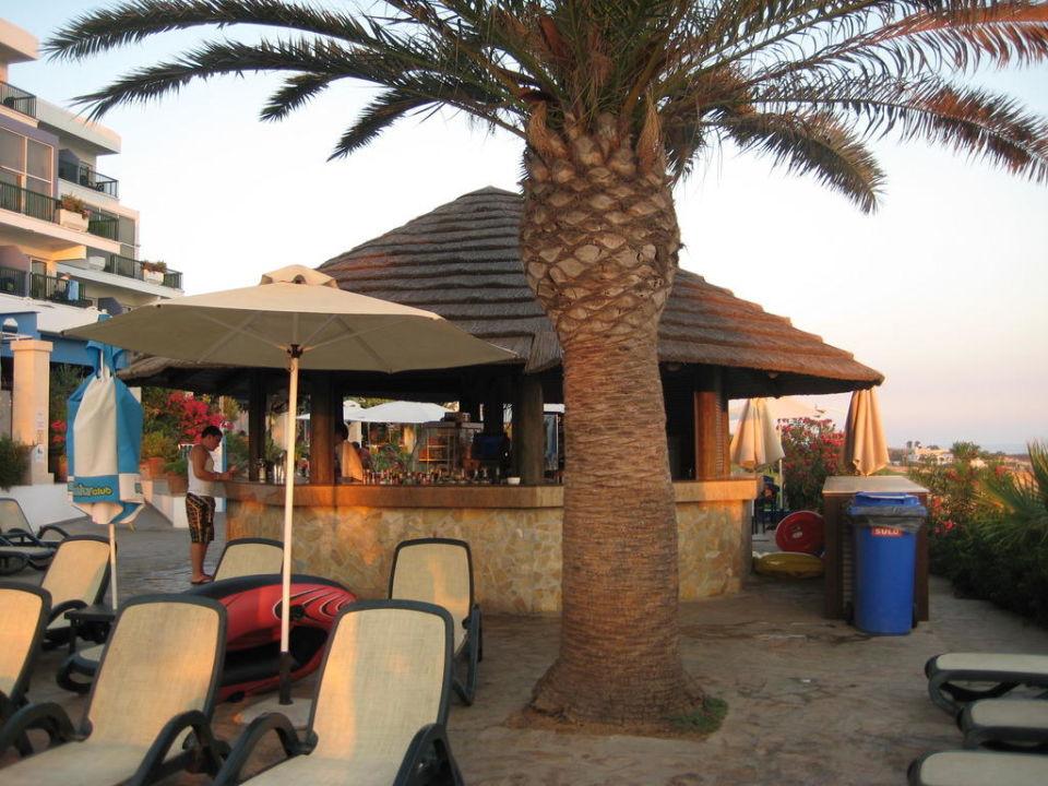 Bild quotpoolbarquot zu hotel club atlantica sun garden beach in for Katzennetz balkon mit sun garden hotel ayia napa