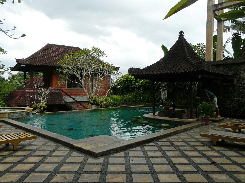 Pool Ubud Bungalow