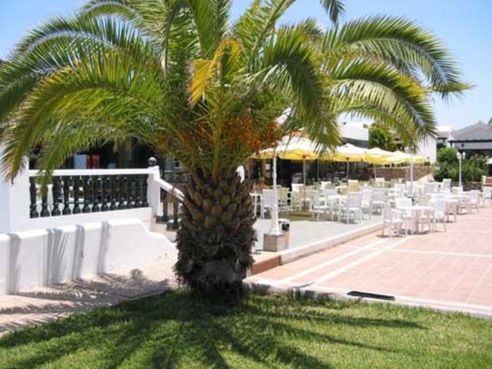 Theke - Maspalomas Lago Hotel Maspalomas Lago