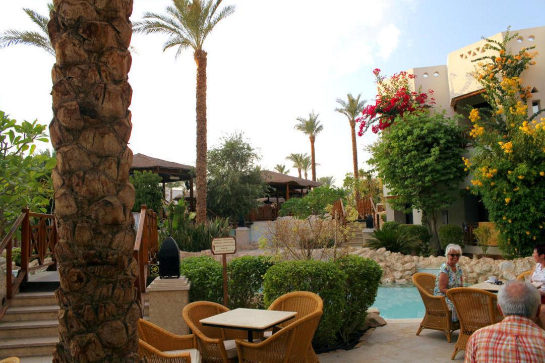 Blick vom Ghazala Cafe aus Ghazala Gardens