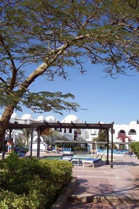 Der Salzwasserpool des Iberotel Arabella Arabella Azur Resort