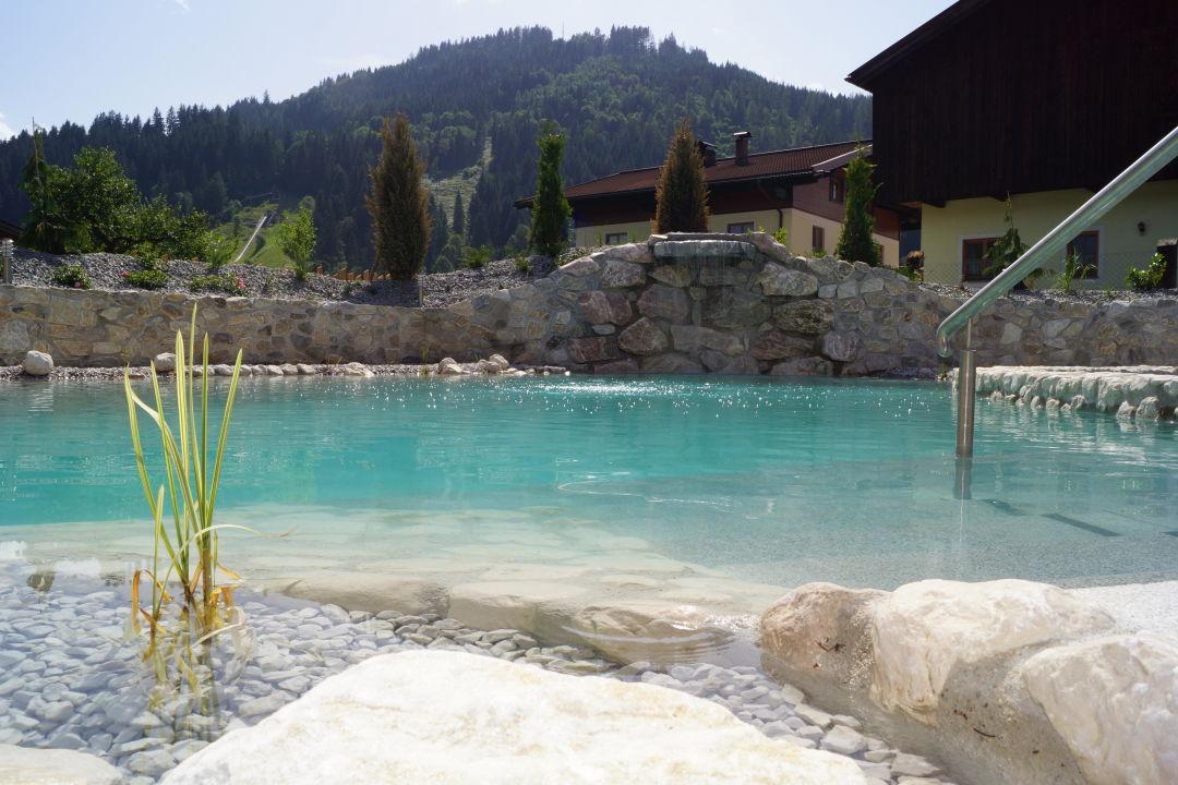 """schwimmteich mit wasserfall"""" thomanhof ferienwohnungen in, Gartenarbeit ideen"""