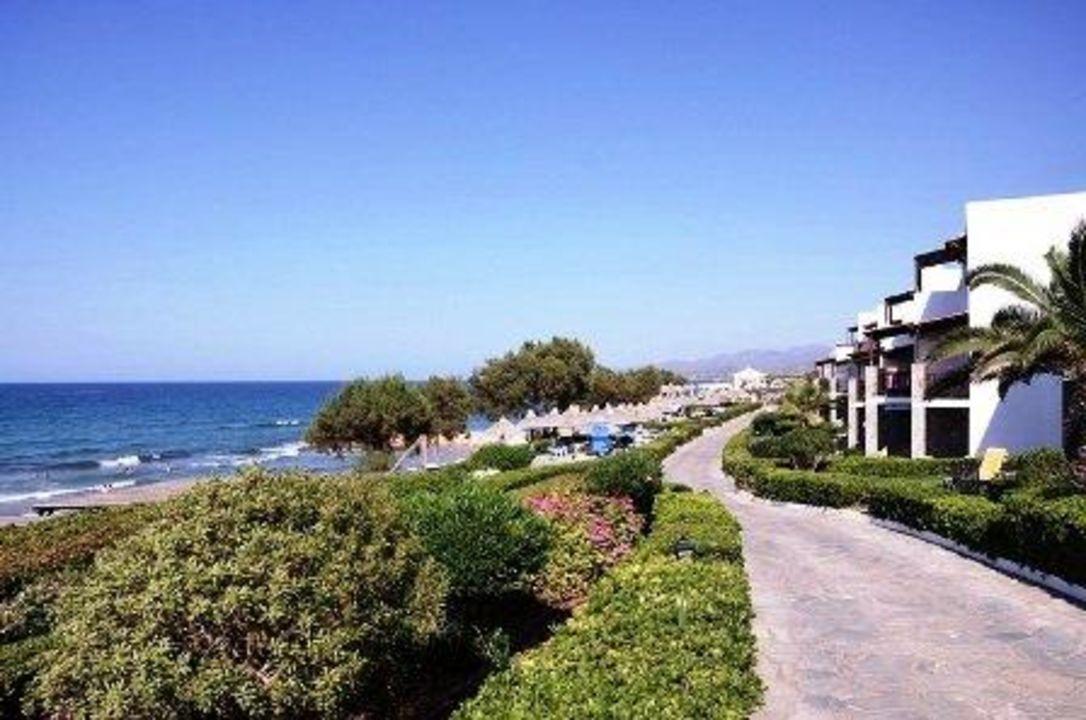 Alexander Beach Hotel And Village Kreta Holidaycheck